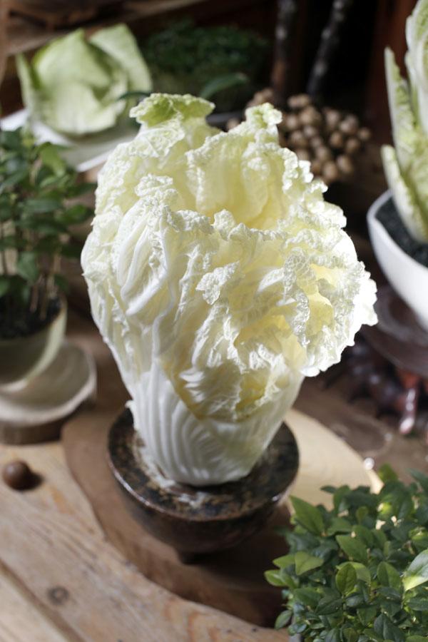 蔬菜除了放冰箱保存,也能成为家中的美