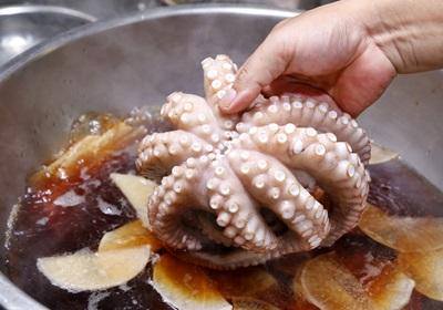想买到新鲜好吃的章鱼,要选身体「黏黏的」!