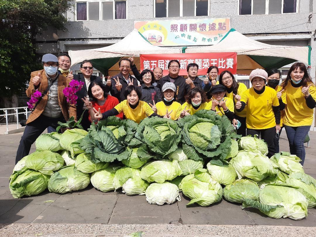 巨无霸「高丽菜王」是他!澎湖乌崁种高丽菜一颗重达20台斤