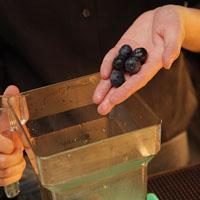 蓝莓优格冰炫风