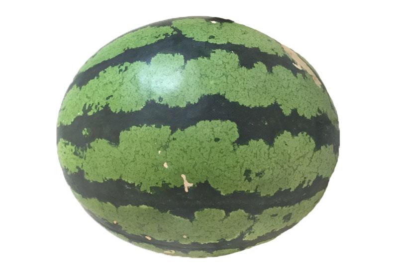 【图解】夏季最爱水果!认识西瓜的常见 6 品种!