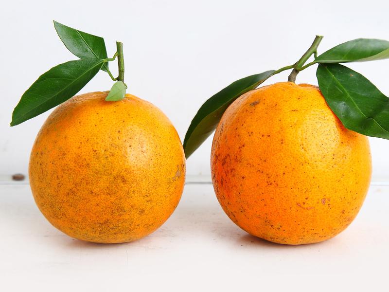 过年吃应景水果,这样挑最经济又美味!