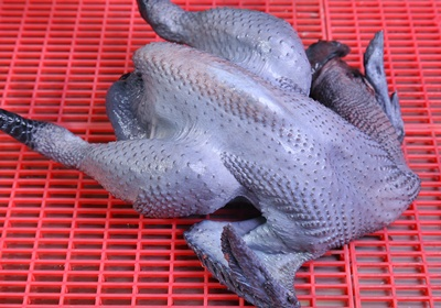 料理新手入门:卫生又好吃的鸡肉怎幺挑?