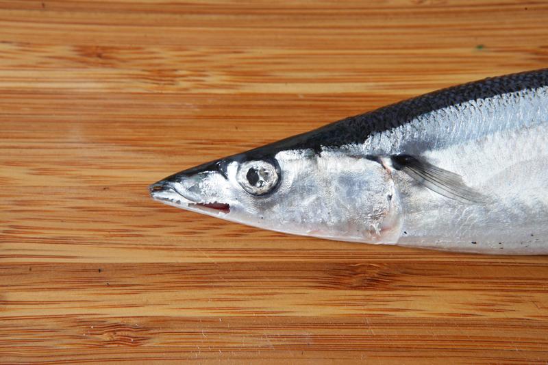 买新鲜煮好料!秋刀鱼的 5 个挑选重点是...