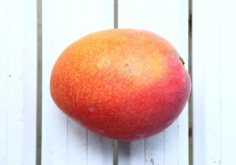 【图解】爱文?金煌?玉文?一篇看懂台湾芒果品种