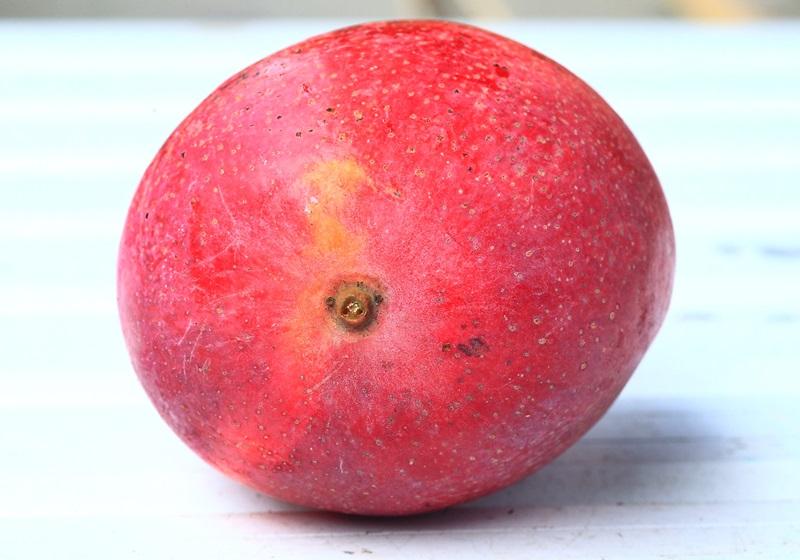 看「果蒂」就能知道甜度?达人教你聪明挑芒果