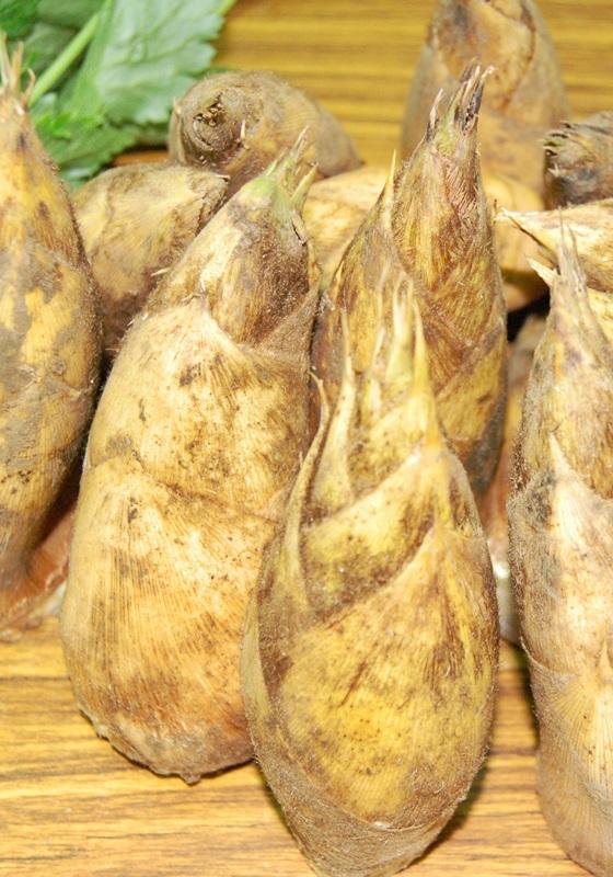 【图解】热天吃凉笋!台湾竹笋原来有这幺多品种