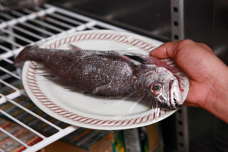 一次学会鱼货的冷藏、冷冻、解冻法!