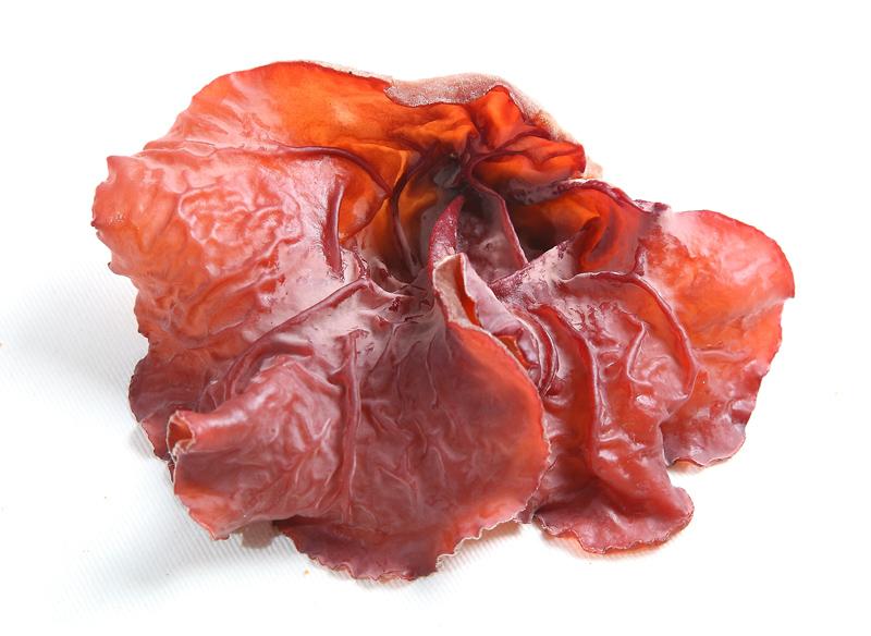 菜中之肉黑木耳:挑选重点 3 口诀